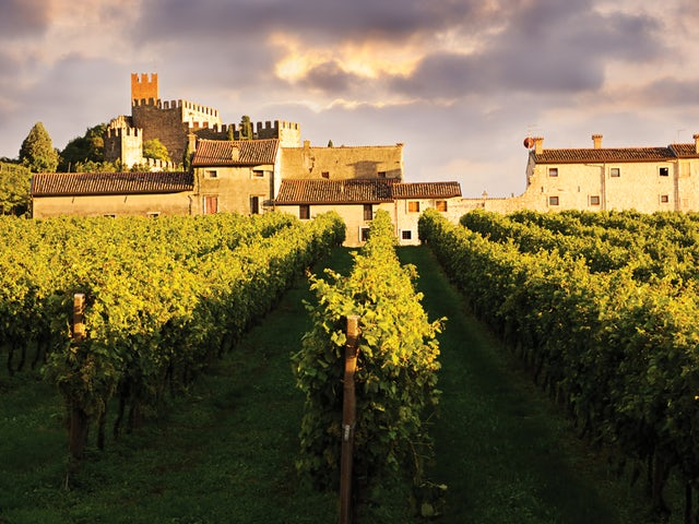 The Timeless Elegance and Wine Routes of Veneto from Central Holidays!