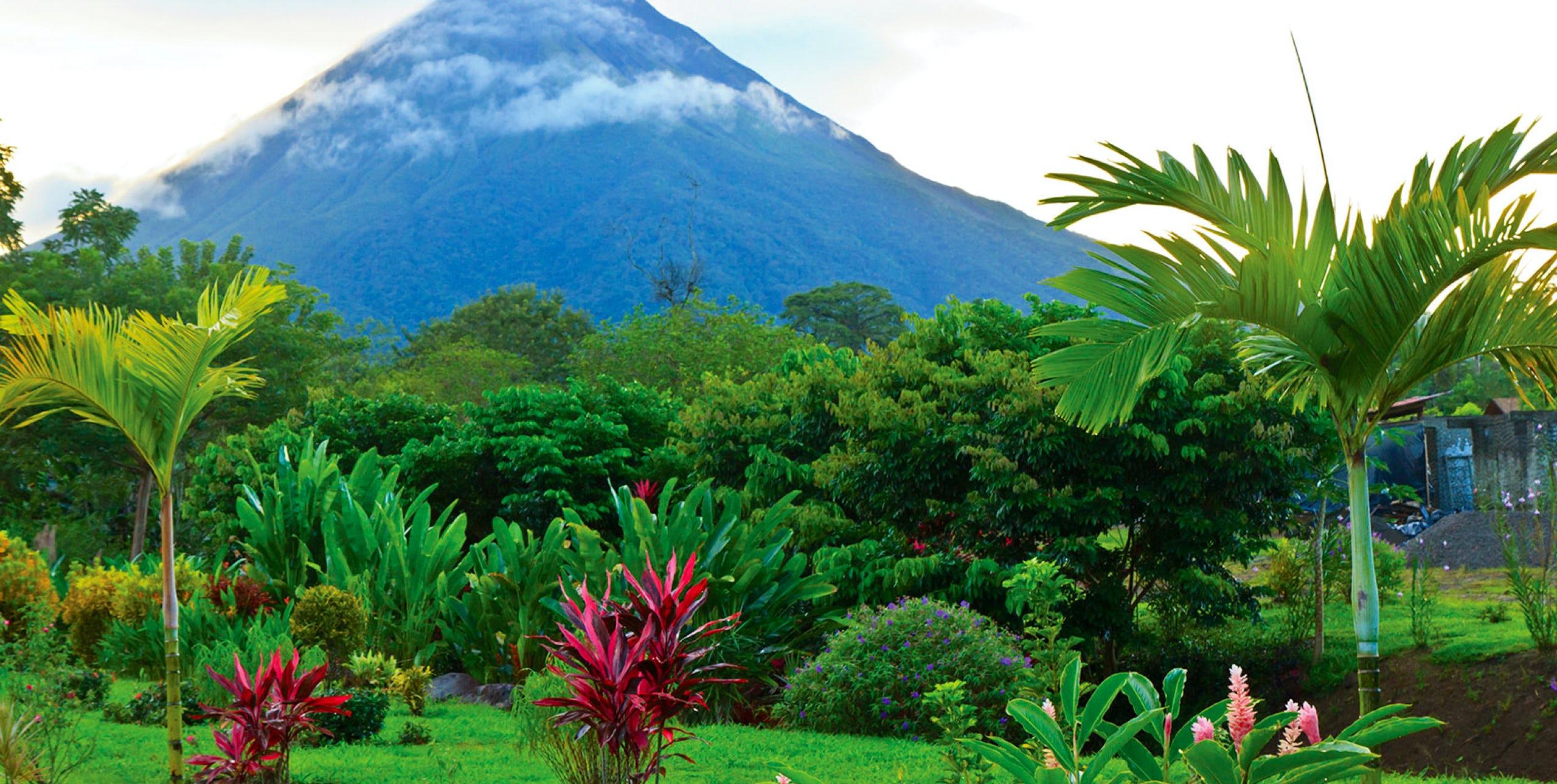 Costa Rica 2019 The Land of Wonder