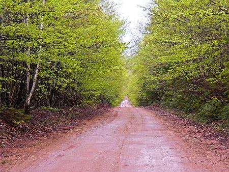 Jack's Trail PEI