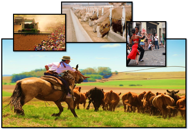 Argentina Agricultural & Sightseeing Tour