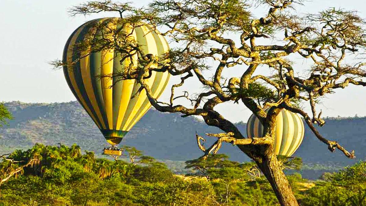 Tanzania Royal Safari