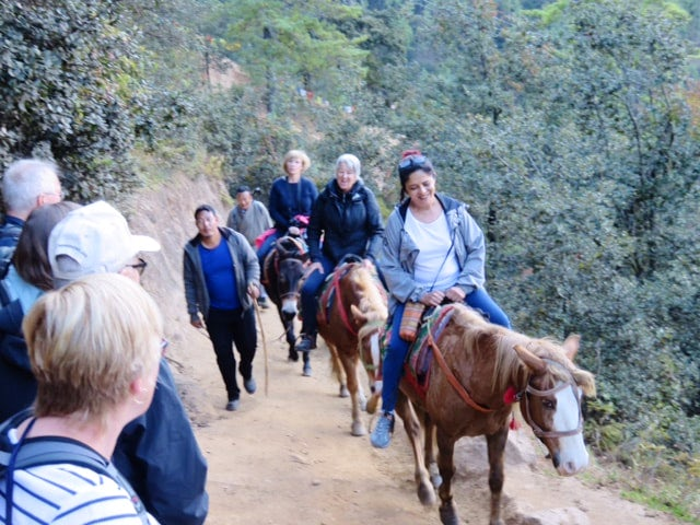 bhutan-2017-image-2_orig.jpg