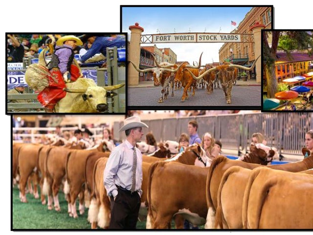 TEXAS AGRICULTURAL & SIGHTSEEING TOUR
