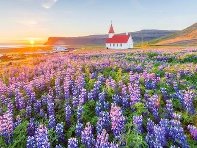29 Reasons Why you Should Visit Iceland this Spring
