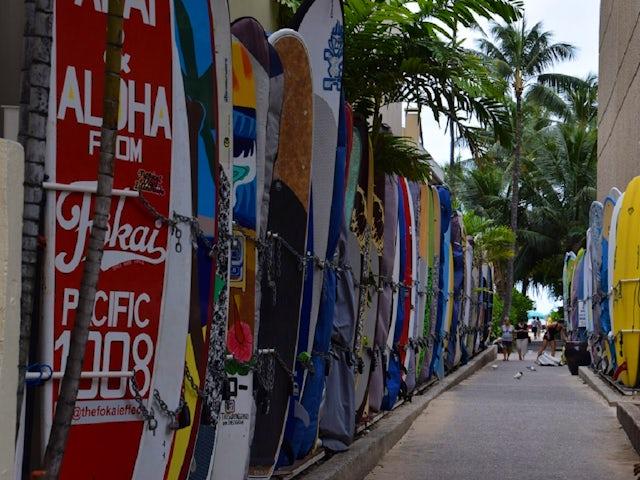 surfboardsrev.jpg