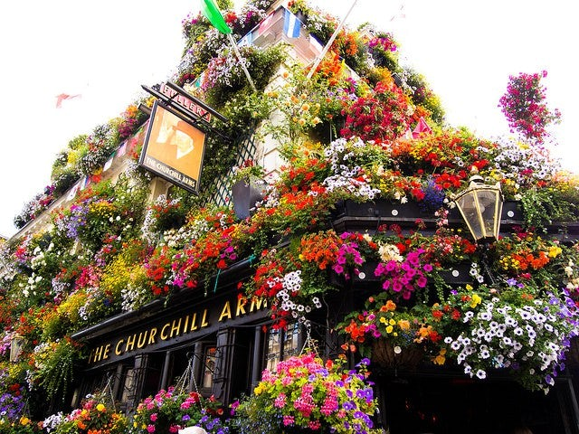 Londons Most Insta Friendly Pubs