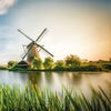 Amsterdam, Kinderdijk & the Dutch Bulbfields River Cruise