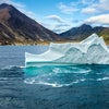 True North: From Polar Bears to Musket Drills – Sailing into Adventure with One Ocean Expeditions