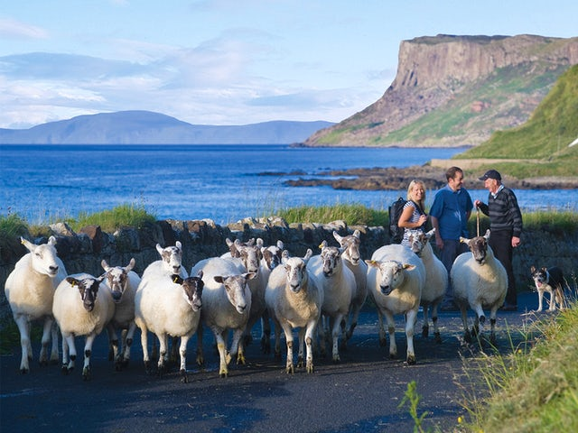 CIE Tours - 2 for 1 airfare with the 8 or 9 day Irish Adventure!