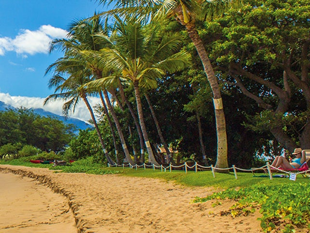 SAVE $50 per person on the Hawaiian Islands with Cosmos