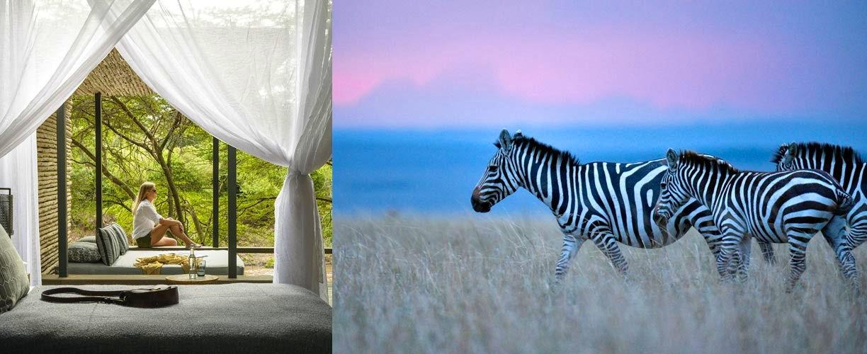 Wellness Kenya: Cultures & Wildlife 2019