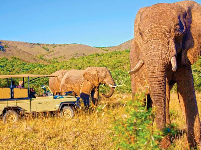 South Africa, Victoria Falls & Botswana-March 18 -31, 2020