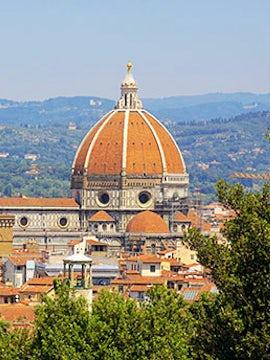 Spotlight on Florence