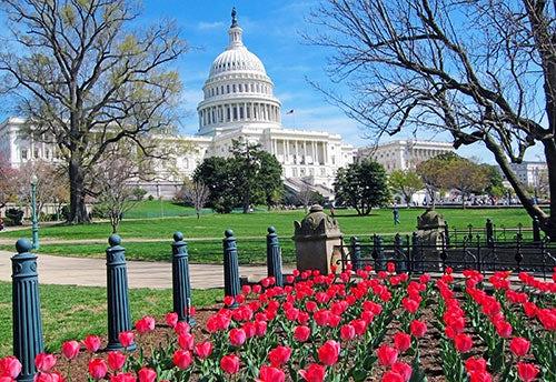 Gardens of American History