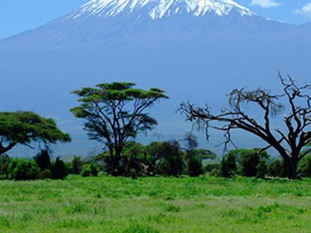 East Africa Private Safari