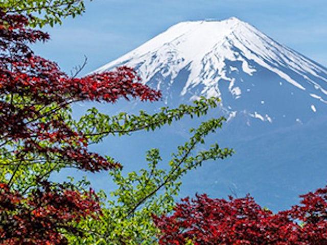 Timeless Japan