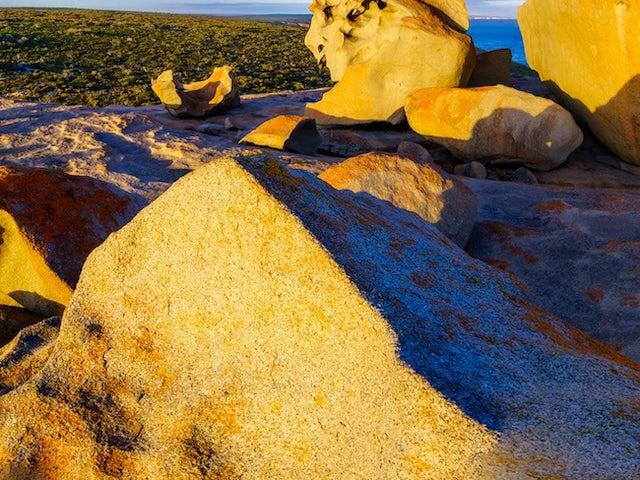 Tastes of Southern Australia Summer 2019