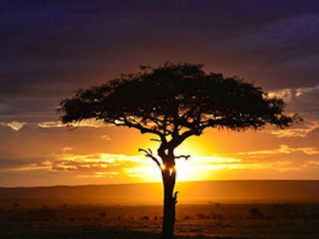 Kenya: A Classic Safari with Nairobi & Amboseli