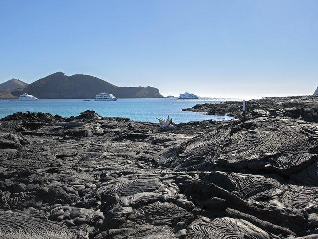 Galápagos — Central Islands aboard the Xavier III