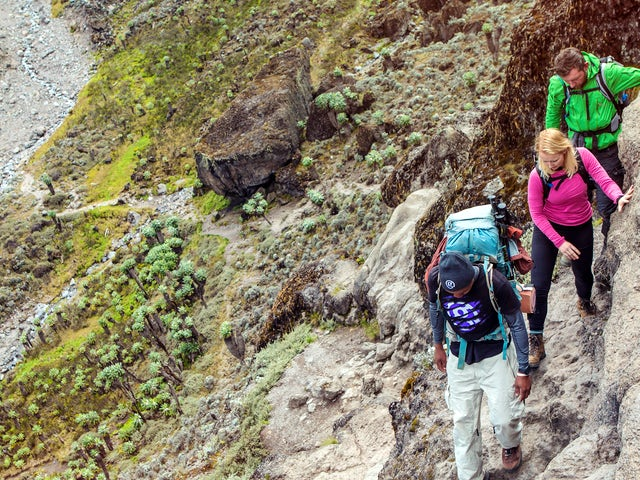 Kilimanjaro – Machame Route & Serengeti Adventure