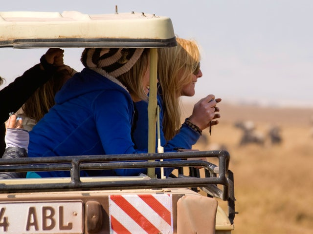 Kenya Safari Experience