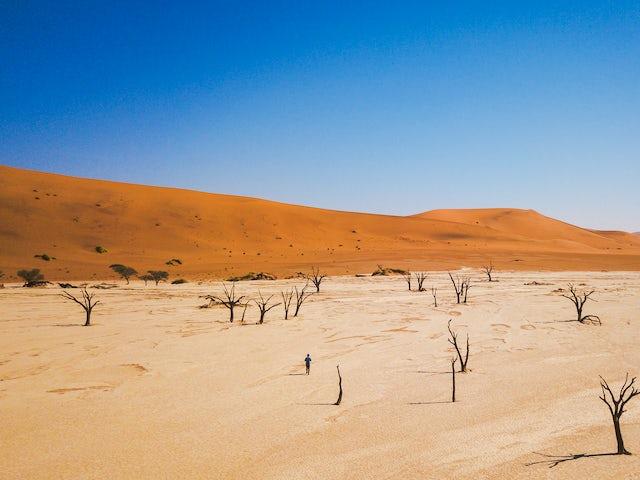 Discover Namibia & Victoria Falls