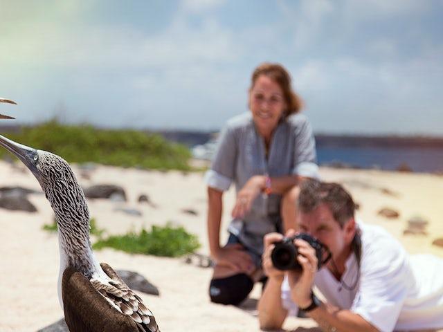 Galápagos — South Islands aboard the Xavier III